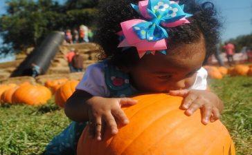 Halloween Girl Costume