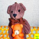 Animals Mama bear
