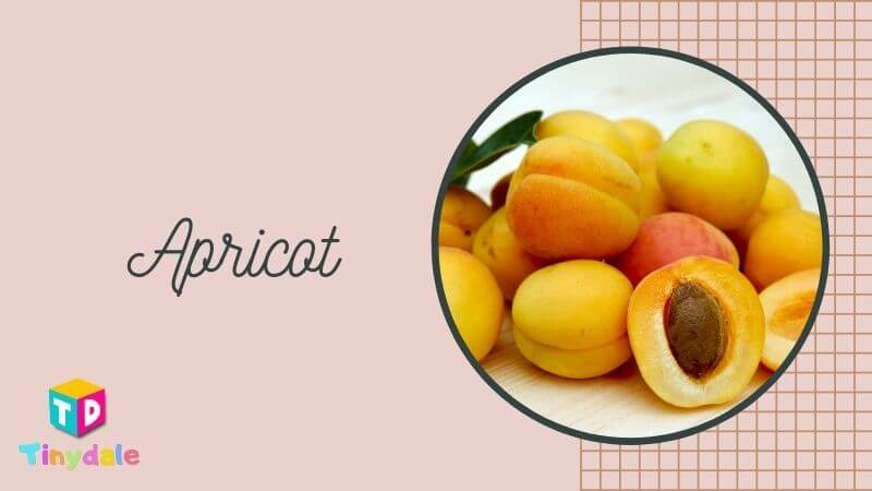 Apricot Foods to increase Breast Milk - tinydale