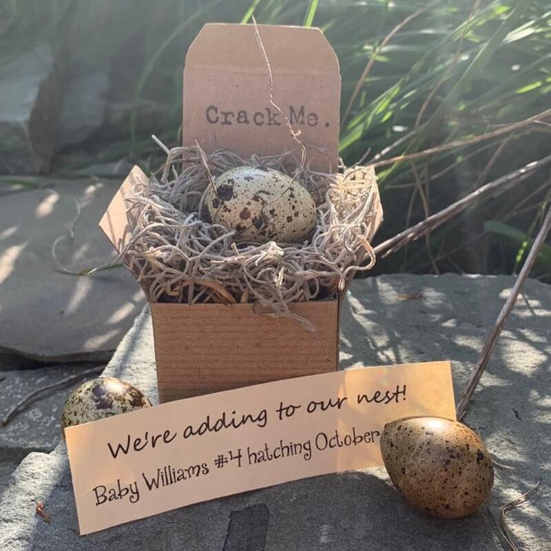 Big Sister Baby Announcement egg idea