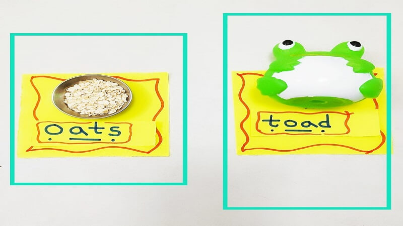 clip cards of oa Digraph