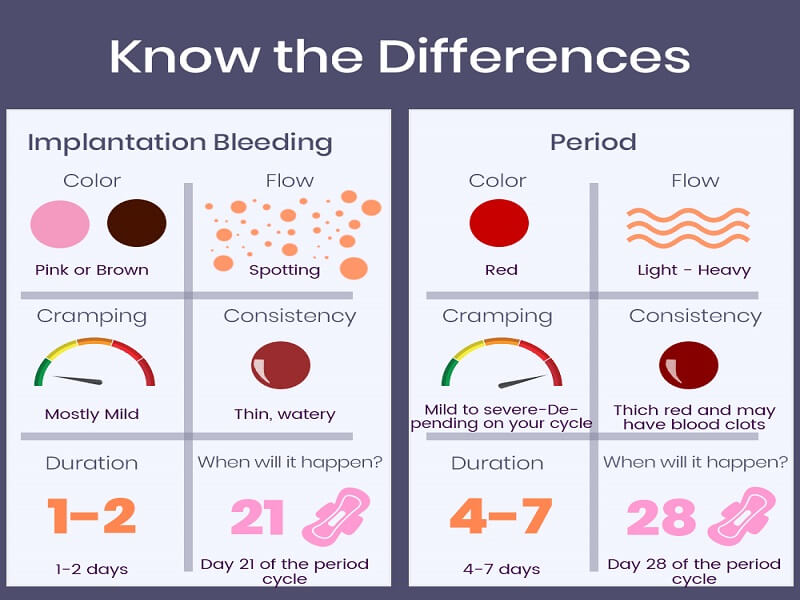 implantation bleeding vs. period bleeding - tinydale